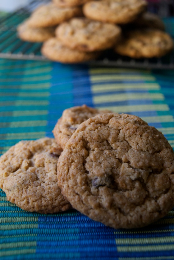 Vegan Chocolate Chip Cookies (3)