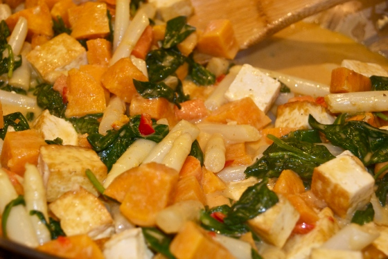 DSC02469Coconut Curry Veggies & Tofu